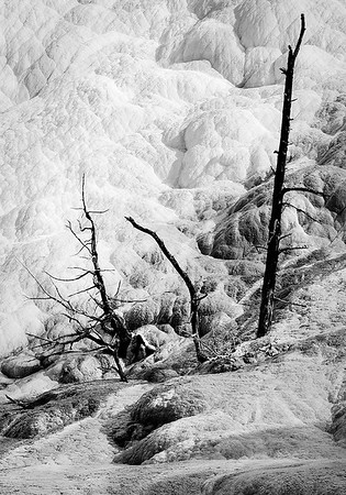 Maker:  Mike Smith<br /> Title:  Mammoth Springs #2<br /> Category:  Black & White<br /> Score:  13