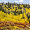 Maker:  Wayne Tabor<br /> Title:  Aspen Ridge<br /> Category:  Landscape/Travel<br /> Score:  12