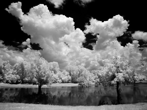 Maker:  Jim Lawrence<br /> Title:  Hamel's Pond<br /> Category:  Black & White<br /> Score:  14
