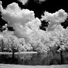 Maker:  Jim Lawrence<br /> Title:  Hamel's Pond<br /> Category:  Black & White<br /> Score:  14