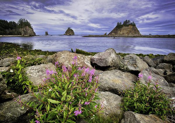 Maker:  Wayne Tabor<br /> Title:  La Push Beach<br /> Category:  Landscape/Travel<br /> Score:  14