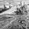 Maker:  Mike Smith<br /> Title:  Mammoth Springs #1<br /> Category:  Black & White<br /> Score:  12
