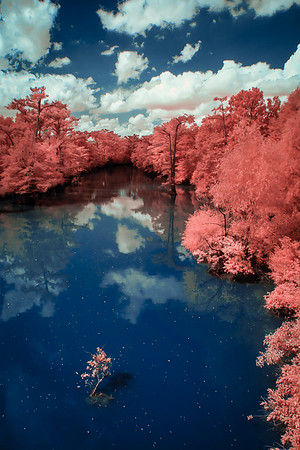Maker:  Jim Lawrence<br /> Title:  Blue Bayou in Red<br /> Category:  Pictorial<br /> Score:  13