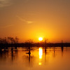 Maker:  Ronald Austin<br /> Title:  Bistineau Sunrise<br /> Category:  Landscape/Travel<br /> Score:  12