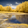 Maker:  Jim Lawrence<br /> Title:  River Overflow IR<br /> Category:  Altered Reality<br /> Score:  12