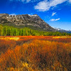 Maker:  Mike Smith<br /> Title:  Yellowstone<br /> Category:  Landscape/Travel<br /> Score:  13