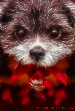 """""""Dragon Puppy"""" <br /> By Eric Sorensen <br /> Catagory: Non-traditional <br /> Score: 13  , 2008"""