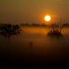 South Louisiana Sunrise - Open Color<br /> Score 13<br /> Dwayne Anders  , 2008