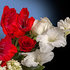 Maker:  Ronald Austin<br /> Title:  Red & White Gladiolus<br /> Category:  Macro/Close Up<br /> Score:  12