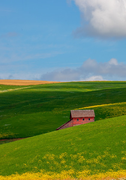 Maker:  Wayne Tabor<br /> Title:  Palouse Barn<br /> Category:  Pictorial<br /> Score:  12