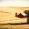 Maker:  Wayne Tabor<br /> Title:  Grungy Barn<br /> Category:  Pictorial<br /> Score:  12.5