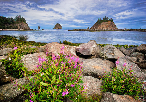 Maker:  Wayne Tabor<br /> Title:  La Push Harbor<br /> Category:  Landscape/Travel<br /> Score:  11.5