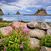 Maker:  Wayne Tabor<br /> Title:  La Push Harbor<br /> Category:  Landscape/Travel<br /> Score:  11.5