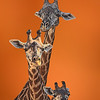 Maker:  DALE LINDENBERG<br /> Title:  GIRAFFES<br /> Category:  Pictorial<br /> Score:  12
