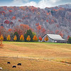 Maker:  Wayne Tabor<br /> Title:  Farm in Autumn<br /> Category:  Pictorial<br /> Score:  13