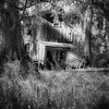 Maker:  Wayne Tabor<br /> Title:  Swamp Cabin<br /> Category:  Black & White<br /> Score:  12
