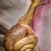 Maker:   Dale Lindenberg<br /> Title:  Snail<br /> Category:  Macro/Close Up<br /> Score:  14