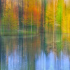 Maker:  Mike Smith<br /> Title:  Fall on Darryls Pond<br /> Category:  Pictorial<br /> Score:  13.5