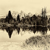 Maker:  Wayne Tabor<br /> Title:  Oxbow Beaver Pond<br /> Category:  Black & White<br /> Score:  12