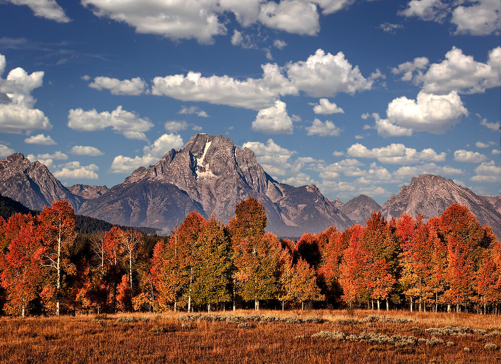 Maker:  Wayne Tabor<br /> Title:  Teton Autumn<br /> Category:  Landscape/Travel<br /> Score:  12