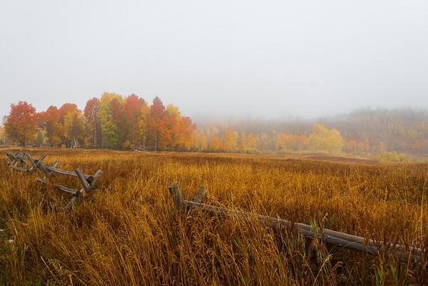 Maker:  Lee Davis<br /> Title:  Foggy Fall Morning<br /> Category:  Landscape/Travel<br /> Score:  13