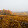 Maker:  Lee Davis<br /> Title:  Foggy Fall Morning<br /> Category:  Landscape/Travel<br /> Score:  13