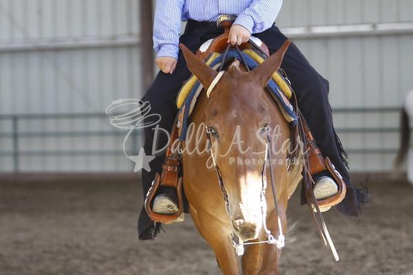 MMC Western Saddle Classes/Reining Fri