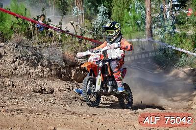 ALF 75042