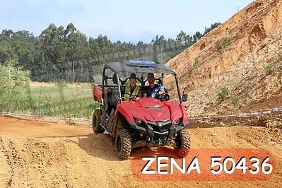 ZENA 50436