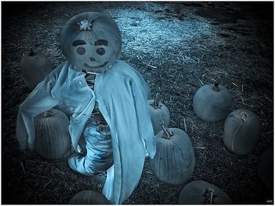 #17 'Mr Pumpkin Head' by deevee. 10/9/07. Olympus -E1.