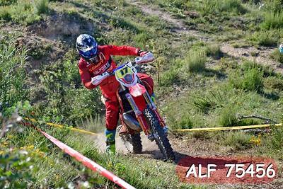 ALF 75456