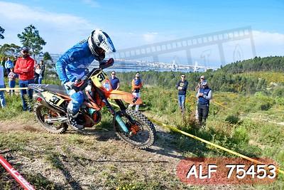 ALF 75453