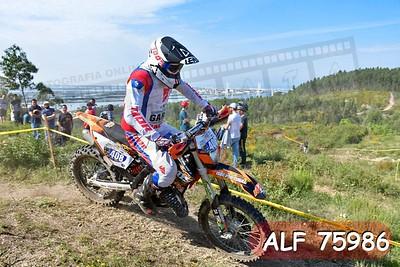 ALF 75986