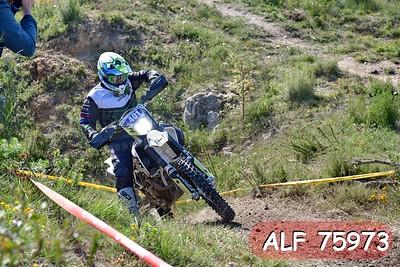 ALF 75973