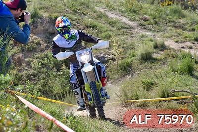ALF 75970