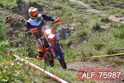 ALF 75987