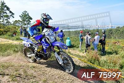 ALF 75997