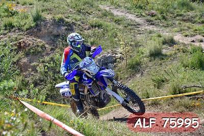ALF 75995