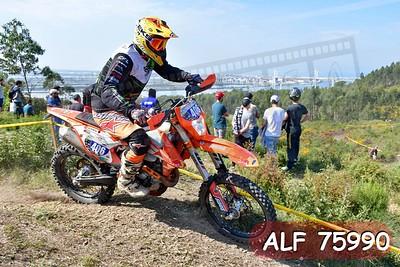 ALF 75990