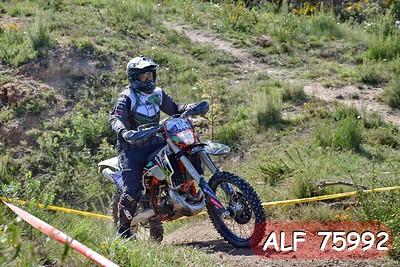 ALF 75992
