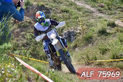 ALF 75969