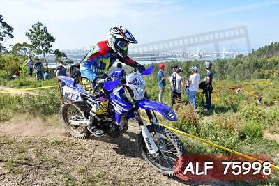 ALF 75998