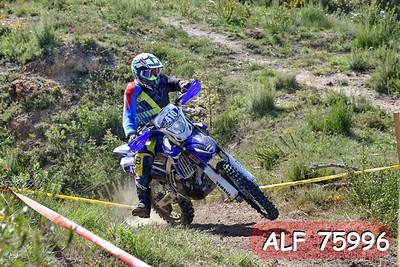ALF 75996