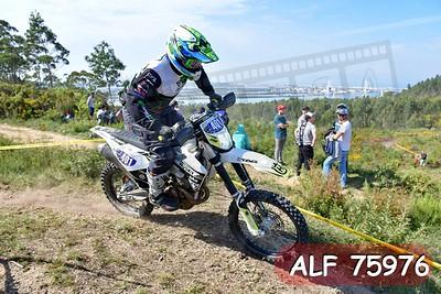 ALF 75976