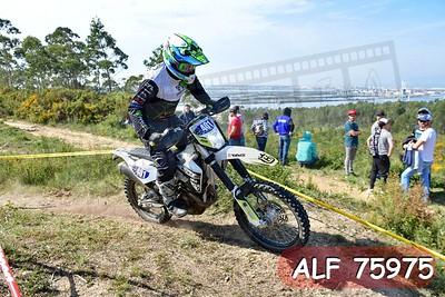 ALF 75975