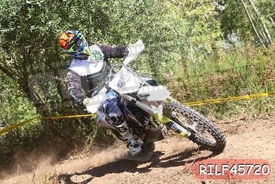 RILF45720