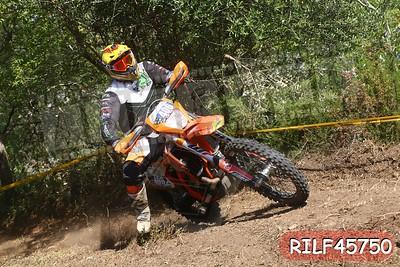 RILF45750