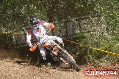RILF45744