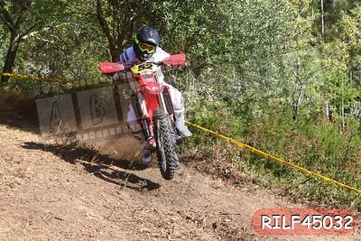 RILF45032