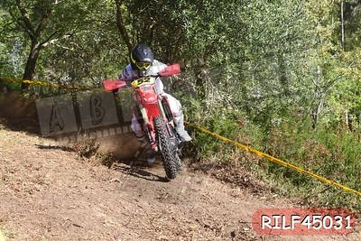 RILF45031